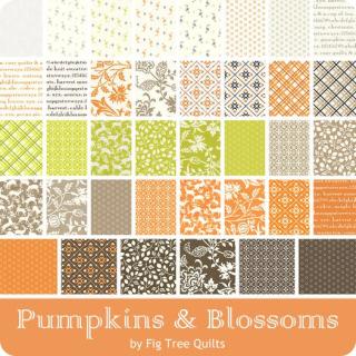 Pumpkinsblossoms-ydg-900-1_3