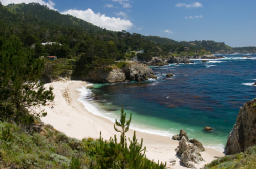 Point_lobos